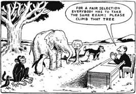 tree climb exam