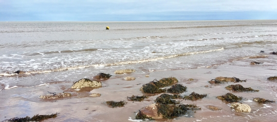 A beach at Exmoor