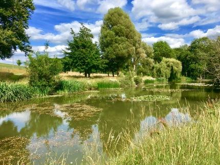 Glyndebourne lake